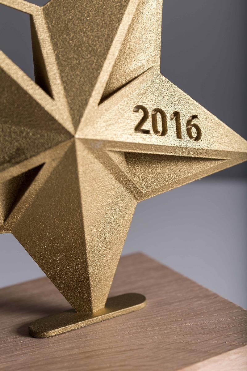 VOKA lifetime achievement 2016 Trophy detail