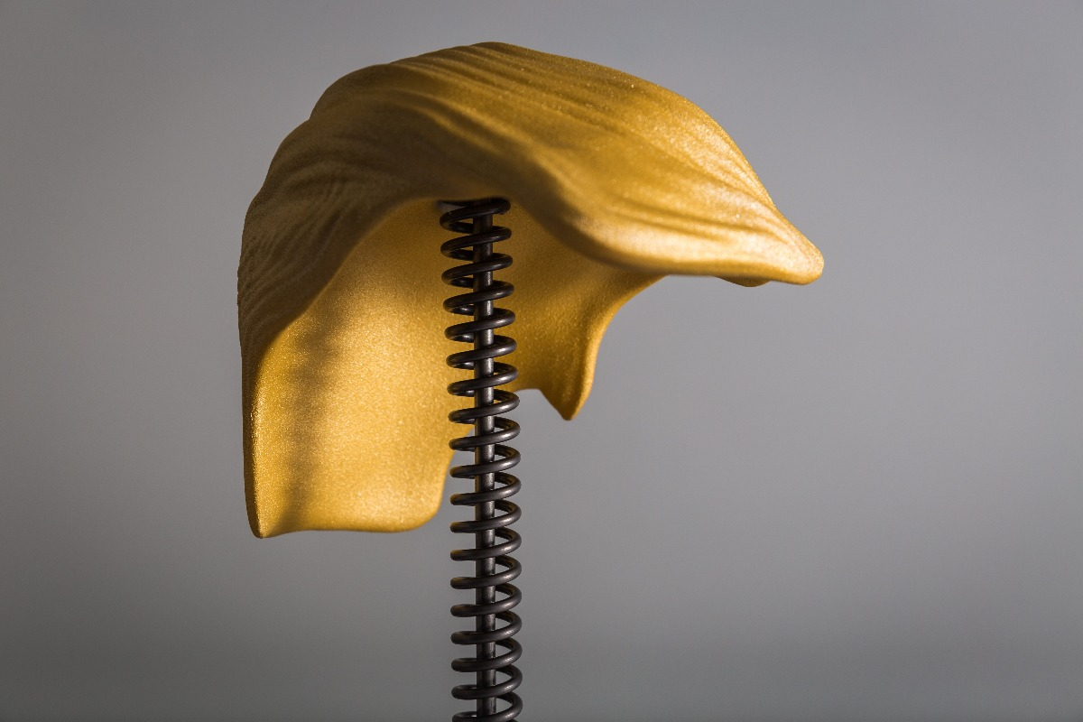 Trump Hair trophy