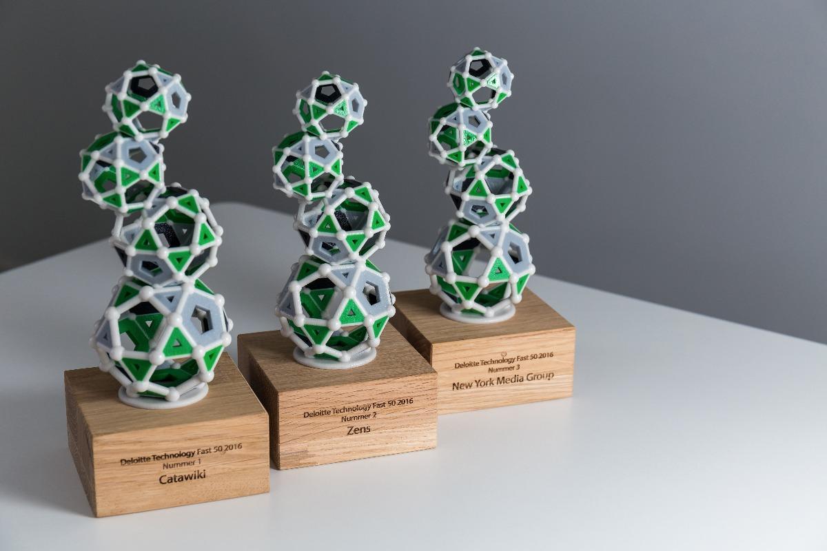 Deloitte award